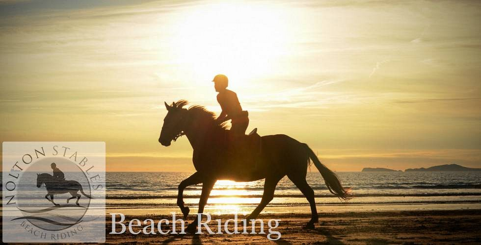 Header beach riding