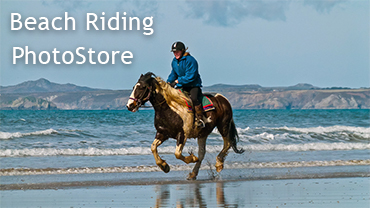 Beach Riding Photo Store