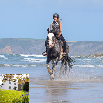 Beach Riding + 1 Night B&B