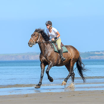 Beach Riding Voucher